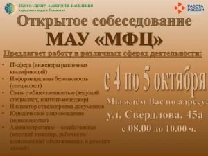 В Тольятти состоится «Открытое собеседование» для МАУ «МФЦ»