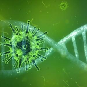 Центр имени Гамалеи проведет испытания единой вакцины против гриппа и коронавируса