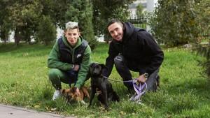 """На передачу собаки новым хозяевам приедет игрок """"Крыльев"""", который выгуливал животное в день визита."""