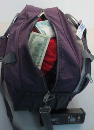 Собака самарских таможенников помешала вывезти валюту за рубеж