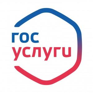 К 2024 году у большинства россиян будет оформлена учетная запись на «Госуслугах»