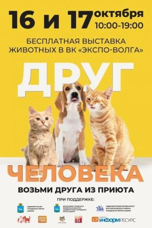 в эти выходные в Самаре пройдет бесплатная выставка животных