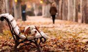 Осенняя хандра – как не дать ей перерасти в депрессию?