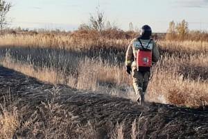 В сухую погоду опасность пожаров от палов травы и мусора возрастает