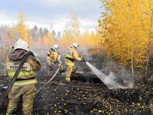 Для тушения пожара привлечены 31 человек и 13 едиництехники.