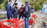 В Промышленном районе Самары выявляли несанкционированную лоточную торговлю