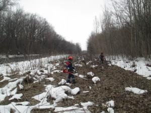 Самарские коммунальные системы очищают охранную зону трубопроводов В этом году работы начинаются 1 февраля, сообщает СКС.