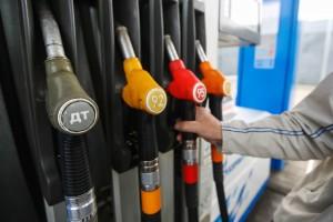 Путин пообещал поговорить с ФАС о возможности «прибить цены» на бензин В 2017 году цены подскочили более чем на 7%
