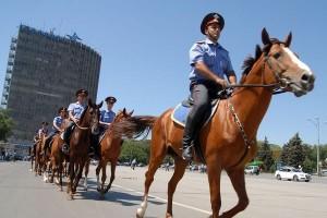 Самарская полиция примет на работу шесть лошадей