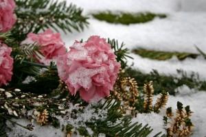 После церемонии возложения цветов участники мероприятия отправятся на кладбище «Рубежное». В 13.00 на площадке 5-ой линии состоится торжественное построение, после которого ветераны и члены семей погибших в Афганской войне возложат цветы к могилам солдат