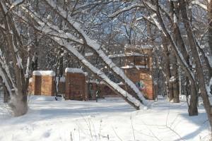 Самара получила шанс восстановить лесопарк имени 60-летия Советской власти Его площадь превышает 133 га.