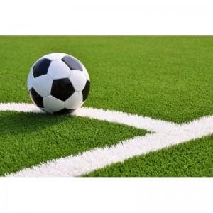 Сегодня, 16 мая на стадионе «Самара Арена» состоится третий тестовый матч