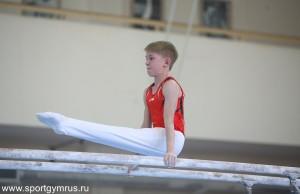 В состязаниях участвовали сильнейшие гимнасты страны в своей возрастной категории. Всего в соревнованиях приняли участие 106 юношей и 103 девушки.